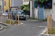 Arbre rue des groseillers (4).png